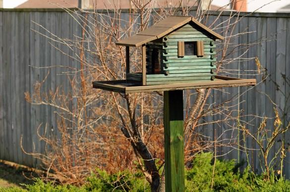 bird feeder plans wood